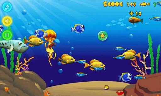 Hình ảnh tai game Hungry Fish in Hungry Fish